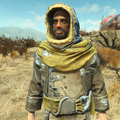 FO4NW Cleansed