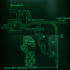 Marigold Station map