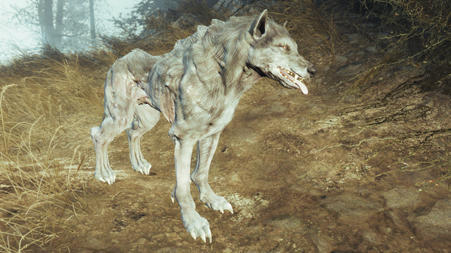 File:Fo4FH grey wolf.png