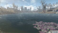Dark Hollow pond