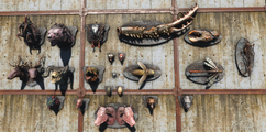 FO4WW Mounted creatures