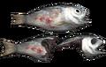 Fo4 fish.png