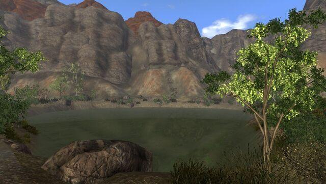 File:Coyote Bluff springs.jpg