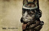 Rexcyborgdog-840263