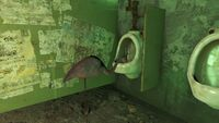 FO4 Urinal Flamingo