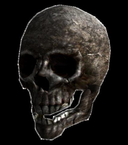 File:SpaceHelmetSkeleton.png