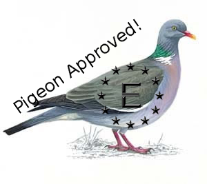 File:Pigeon approved!.png