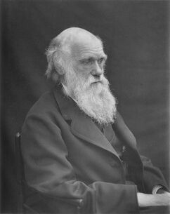 Darwin photo by Leonard from Woodall 1884