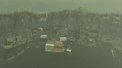Fringe Cove docks