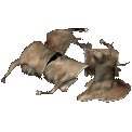 File:Icon FoT brahmin armor.png
