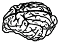 Icon canine brain.png