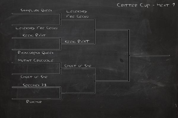 Critter Cup - Heat 4