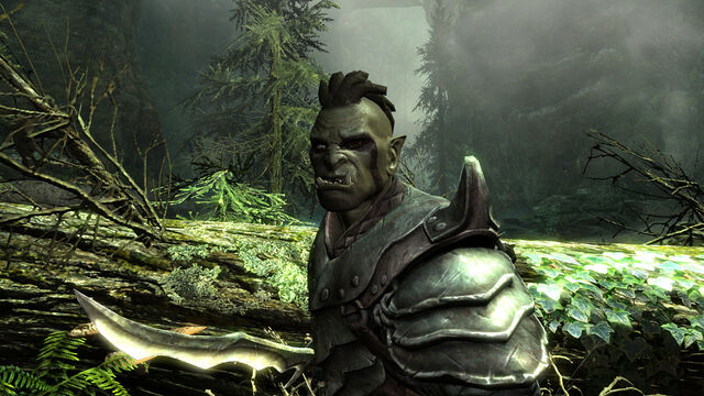 File:OrcNight01--article image.jpg