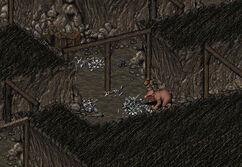 Kill the rat god