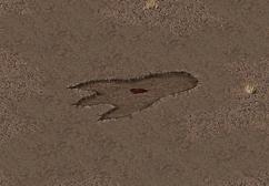 Fo1 Giant Footprint