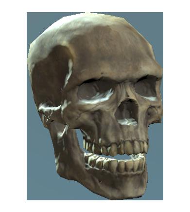 File:Shem drownes skull.png