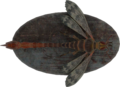 FO4-Mounted-Stingwing.png