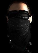 DamWar face mask
