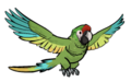 FoS trained parrot.png