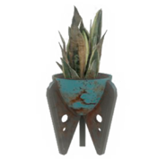 Fo4 blue potted plant3