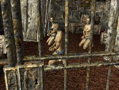 Prisoners of War captives