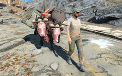 Trader-Fallout4