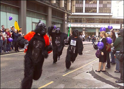 File:Gorillas.jpg