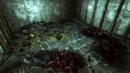 Deathclaw eggs Old Olney underground