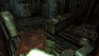 Grandma Sparkle's shack