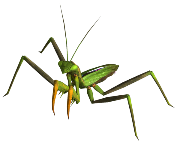 File:Giant mantis.png