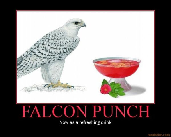 File:Falcon-punch-falcon-punch-drink-demotivational-poster-1232958157.jpg