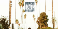 American Beauty/American Psycho (song)