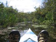 Kayak everglades feet-1024x768