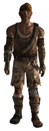 File:Capital Wasteland Raiders Armor.png