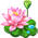 File:WaterLily p.png