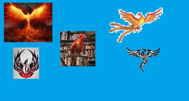 File:Phoenix images.png