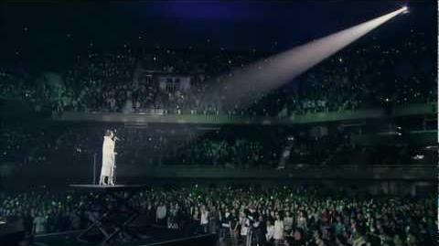 Megumi Nakajima - Songbird(Live)