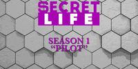 Pilot (Secret Life)
