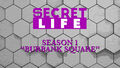 Thumbnail for version as of 05:59, November 16, 2015
