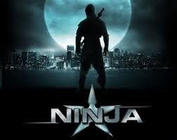 File:Ninja.jpeg