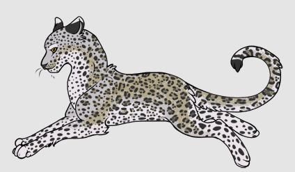 File:A cat.PNG