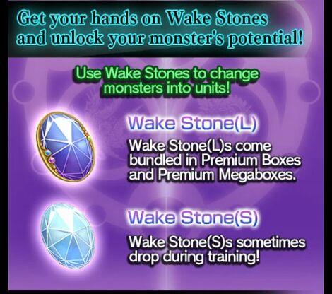 Wake Stones