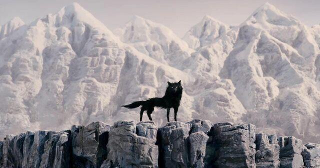 File:Wolf.jpg