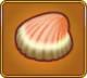 Ancient Seashell