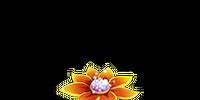 Fruitful Flower