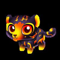 Lava Leopard Baby