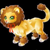 Scaredy Lion Adult