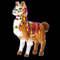 Peruvian Llama Adult
