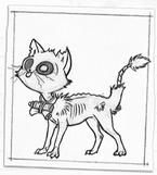 MF's cat