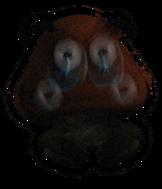 Hologram Goomba